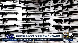 President Trump calls for gun reform - Video