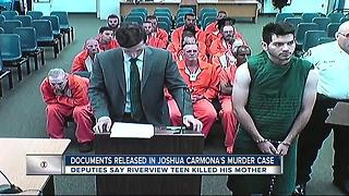 Documents released in Joshua Carmona's Murder case - Video