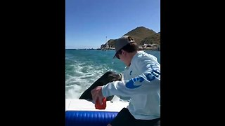 Sea Lion straight up bites dude on boat
