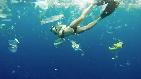Stunning free-diver describes 'real life nightmare' of swimming into approximately three tonnes of rubbish floating in the ocean