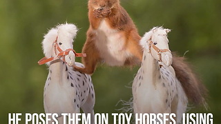 Photographer Poses Squirrels on Toy Horses