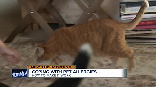 Coping with pet allergies