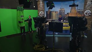 Celery visits the 7 Eyewitness News morning team before final Bisons race - Video