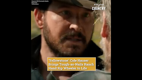 'Yellowstone': Cole Hauser Brings Tough-as-Nails Ranch Hand Rip Wheeler to Life