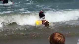 Surf Dogs Hit The Waves For World Championships in Pacifica, California - Video