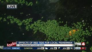 Effects of algal blooms on local fisherman - Video