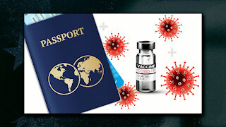 Where Are Your Papers? Some Experts Saying the Vaccine Will Be Mandatory for Travel