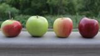 Nutritional Benefits Of Apples For Athletes - Video