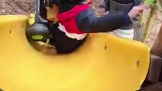 Boy Tries to Go Down a Slide in Tricycle and Fails Spectacularly