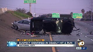 Suspect identified in deadly National City hit-and-run