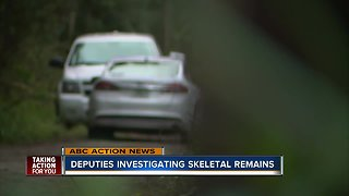 Skeletal remains found in New Port Richey - Video