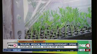 Medical marijuana dispensary to open in SWFL - Video
