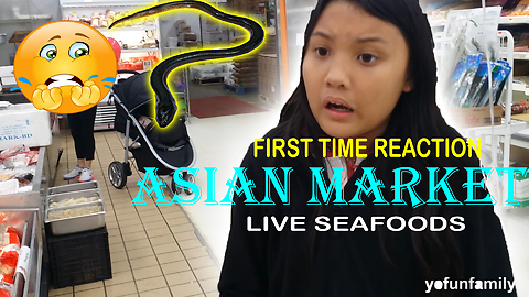 Kids React to Seeing Live Eels, Fish and Crabs