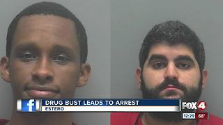 More than 20 pounds of marijuana seized during Estero drug bust - Video