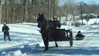 Amish skiing featuring horse and carriage