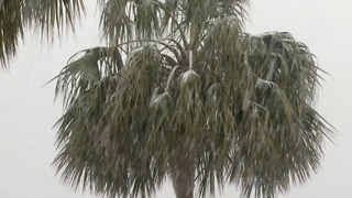 Southeast digging out from rare winter storm