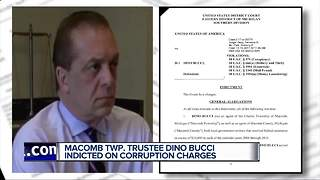 Macomb Twp. Trustee Dino Bucci indicted on corruption charges - Video