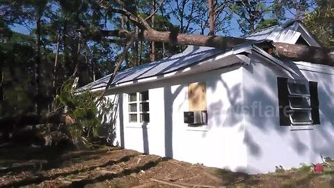 Huge pine tree crashes into bedroom of Florida home