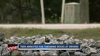 Juvenile arrested for reportedly throwing rocks at cars in Pasco County