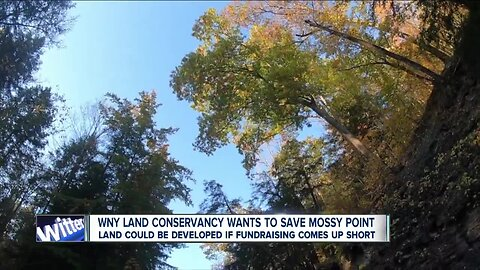 """WNY Land Conservancy trying to save """"Mossy Point"""" in Wales from being developed"""
