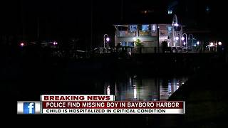 5-year-old boy reported missing found in water in St. Petersburg - Video