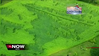 Crop circles found in rural Wisconsin farm - Video