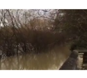 Walkway by River Seine Submerged Amid Severe Flooding - Video