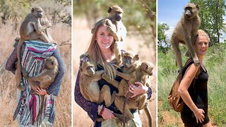 Stunning blonde conservationist becomes mum to dozens of orphaned baboons and monkeys