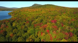 Drone Footage Captures Early Fall Foliage at Little Averill Pond, Vermont - Video