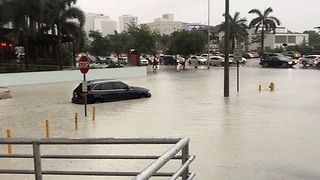 Heavy Rain Triggers Flash Flooding in Miami - Video