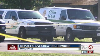 Homicide Investigation in Immokalee