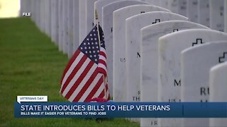 State of Michigan introduces bills to help veterans