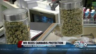 Local marijuana dispensary reacts federal marijuana crackdown - Video