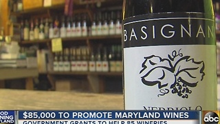Maryland wineries receive $85,000 in government grants - Video