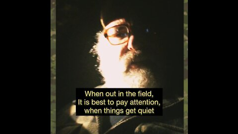 Pay attention when things get suddenly quiet outdoors