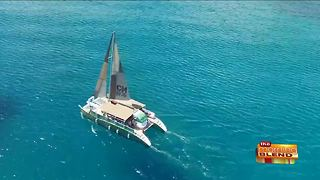 A Great Time to Cruise - Video
