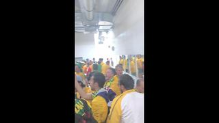 Australian fans go wild in stadium toilets after Denmark draw