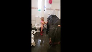 Three-year-old takes pony into the bathroom for a warm shower