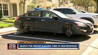 Search for person slashing tires in neighborhood