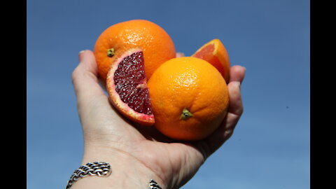 What are Heirloom Navel Oranges?