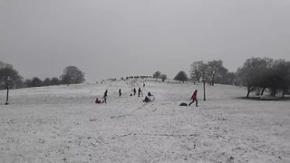 Londoners Go Sledding on Primrose Hill as Amber Snow Warning Continues - Video