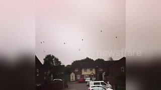flock of birds flying in eery sky over Cardiff as Ophelia approaches - Video