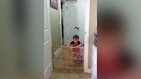 Mission Impossible: Baby Gate Escape