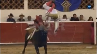 Matador's Crotch Takes Bull By The Horns In Gruesome Video - Video