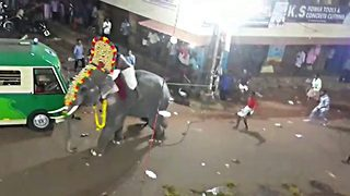Hair-raising moment elephant carrying priests goes on rampage during festival procession in India - Video