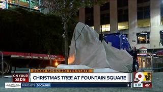 Christmas tree arrives at Fountain Square in downtown Cincinnati - Video