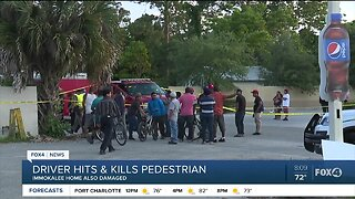 Driver in Immokalee hits and kills pedestrian