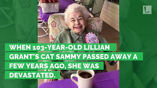 103-Year-Old Woman in Tears After Shelter Surprises Her With Cat for Birthday - Video