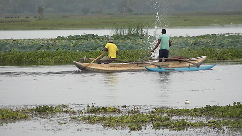 Catching Fish By Using The Net-Net Fishing In lake