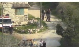 Israeli Activists Capture Video of Border Guards Throwing 'Stun Grenade' at Palestinian Couple and Child